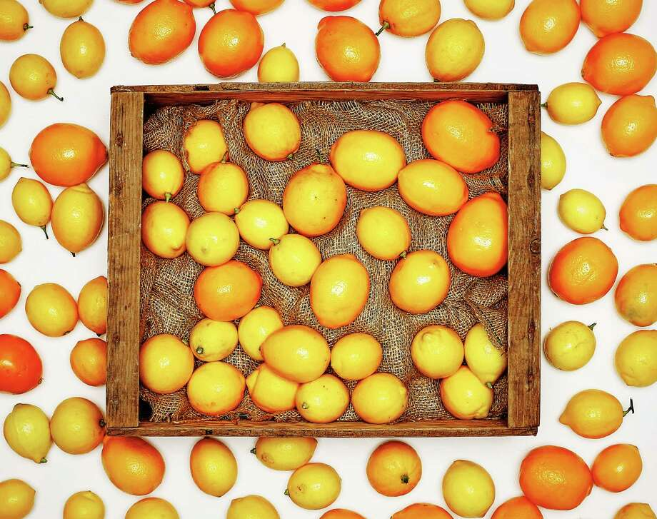 Meyer lemons are easy to grow in containers or small plots. Photo: Russell Yip / ONLINE_YES