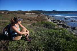 In this Jan. 7, 2015 photo, visitor Claudia Rojas watches northern elephant seals along a beach at Ano Nuevo State Park in Pescadero, Calif.  Researchers tracking elephant seals off the Northern California coast say they have discovered the animals travel much farther than once thought. Male elephant seals spend much of their time in the northern Pacific. Females tend to hunt in the northeast Pacific. They return to Ano Nuevo in San Mateo County and other spots on the California coast each winter to breed. (AP Photo/Bay Area News Group, Aric Crabb)