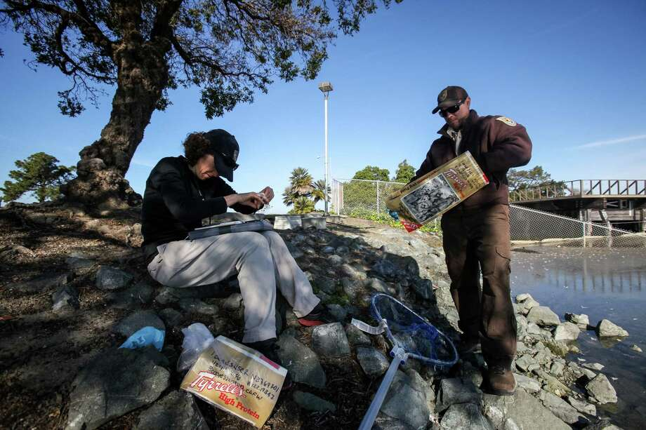 Beckye Stanton, state Fish and Wildlife worker, logs information as Kevin Aceituno, a contaminants biologist from the U.S. Fish and Wildlife Bay Delta office, bags a dead bird for research in San Leandro. Photo: Santiago Mejia / The Chronicle / ONLINE_YES