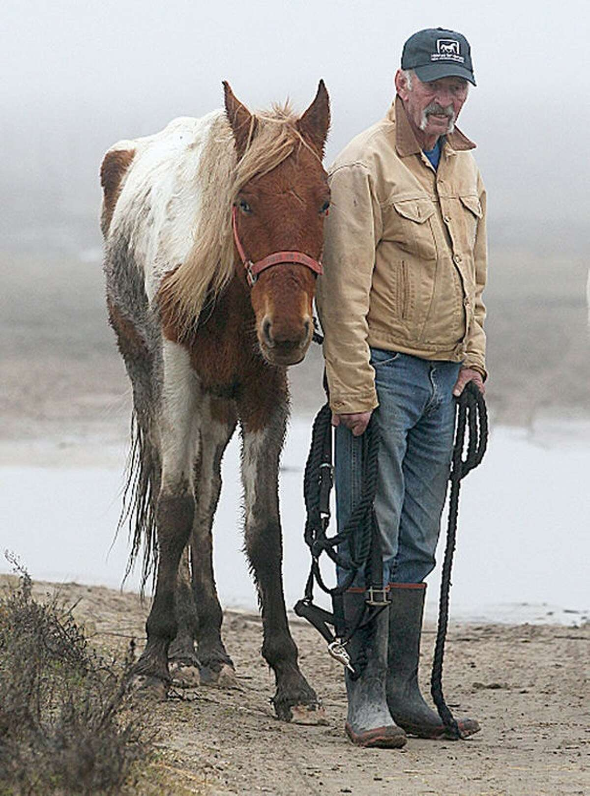 Galveston police seized 27 horses from S-n-G Horseback Riding in Jamaica Beach.