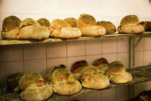 Bread artisans for the ages in southern Italy - Photo