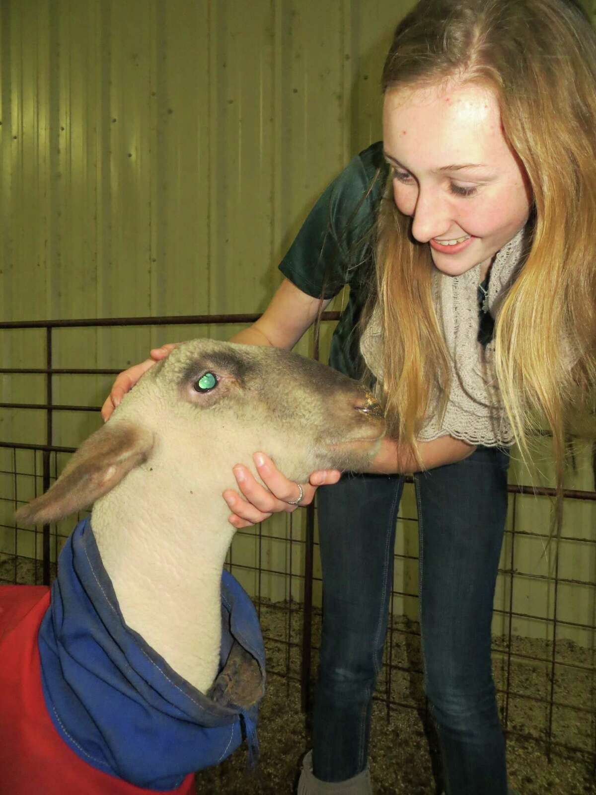 Jessie B Bolton, 14, checks out a lamb she has entered at the Hill Country Youth District Livestock Association Show to be held Jan. 18-24 at the Hill Country Youth Exhibit Center in Kerrville. She said new faciltiies built at the complex on Texas 27 exceeded her expectations.