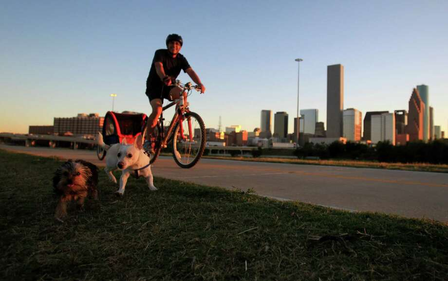 A cyclist with his dogs on the Heights Bike Trail. Photo: Mayra Beltran, Staff / © 2013 Houston Chronicle