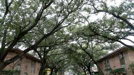 The Kirby Court apartments at 2612 Steel Street, in Upper Kirby, with it's canopy of trees, photographed, Wednesday, Jan. 21, 2015, in Houston. A developer has delayed plans to build a high-rise apartment building on the site of some of those apartments. For Sunday Business centerpiece updating readers on the status of commercial real estate projects that have been announced but have not broken ground. ( Karen Warren / Houston Chronicle  )
