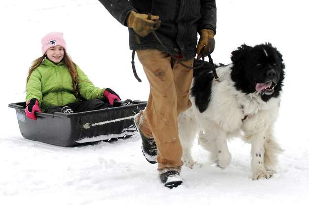 Rhiannon Lane, 10, of Hoosick Falls, left, gets a sleigh ride from Jim Hussey of Ballston Spa and his Newfoundland, Daisy, during the 30th annual Winter Festival on Saturday, Jan. 24, 2015, at Grafton Lakes State Park in Grafton, N.Y. The event also featured ice fishing, hockey, hikes, games for kids and a polar plunge. (Cindy Schultz / Times Union) Photo: Cindy Schultz / 00030277A