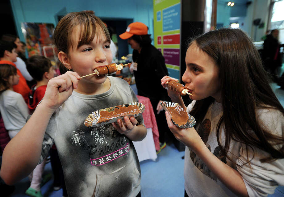 The annual Chocolate Expo at the Maritime Aquarium in Norwalk is this Sunday Photo: Brian A. Pounds / Connecticut Post
