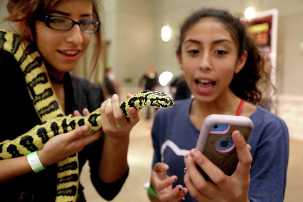 Riley Street, 17, left, of Houston, with her new pet a Jungle Jaguar Carpet Python bought from Rainbow Boa's at the Houston Exotic Reptile and Pet Show hosted by the Texas Association of Reptile Keepers at the Lone Star Convention and Expo Center Sunday, Jan. 25, 2015, in Conroe, Texas. Lylah Pereira, right, Riley's friend, shows her mom on FaceTime the python.