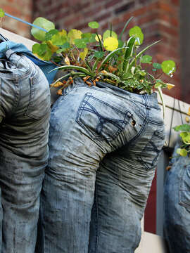 Plants grow in pants at the Please Touch Community Garden.