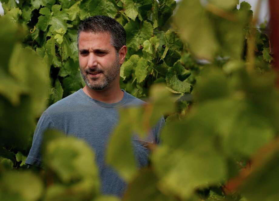 Winemaker Jamie Kutch watches the growth of Pinot Noir grapes at the Falstaff vineyard near Sebastopol he will use for his wine. Photo: Brant Ward / San Francisco Chronicle / ONLINE_YES