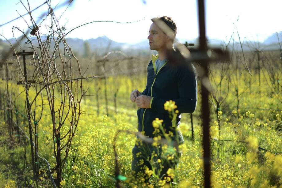 Winemaker Leo Hansen amid mustard and vines at Healdsburg's Stuhlmuller Vineyards. Hansen also makes exceptional Chenin Blanc under his Leo Steen label. Photo: Erik Castro / Special To The Chronicle / ONLINE_YES