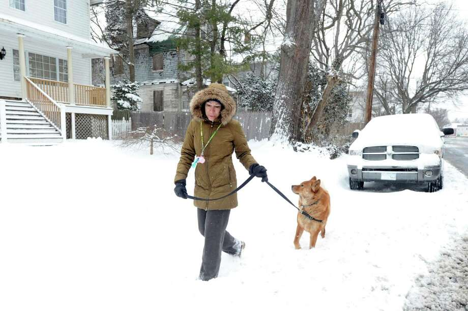 Bonnie Zeh walks her Akita, Bentley, on Mead Avenue during the winter storm that hit Greenwich, Conn., Tuesday morning, Jan. 27, 2015. Photo: Bob Luckey / Greenwich Time