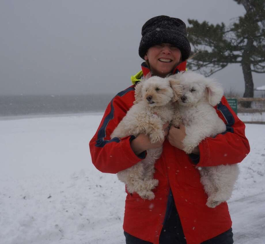 Old Greenwich resident Trish Hussey with her dogs Bridget, left, and Baxter at Greenwich Point Photo: Paul Schott