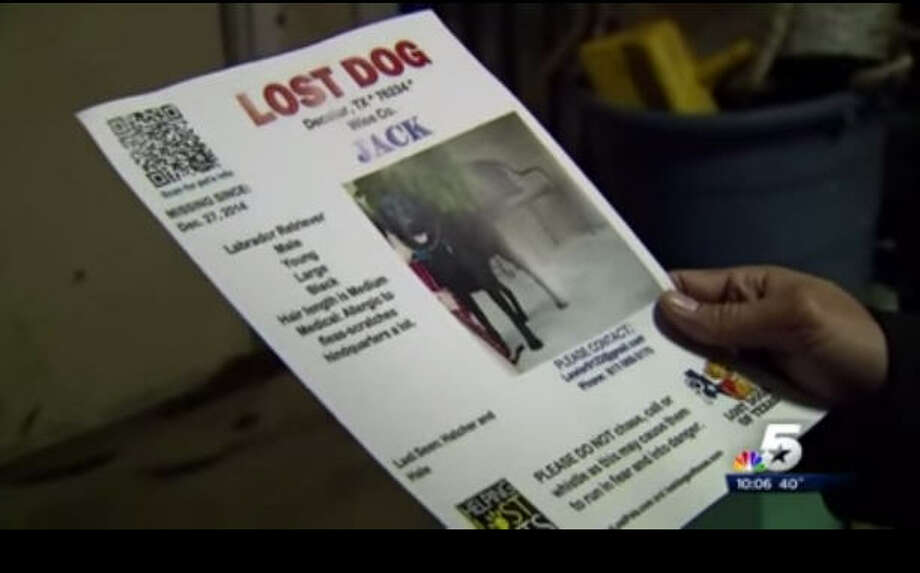 More than 40 dogs have reportedly disappeared from North Texas homes since November 2014. Photo: Screen Grab