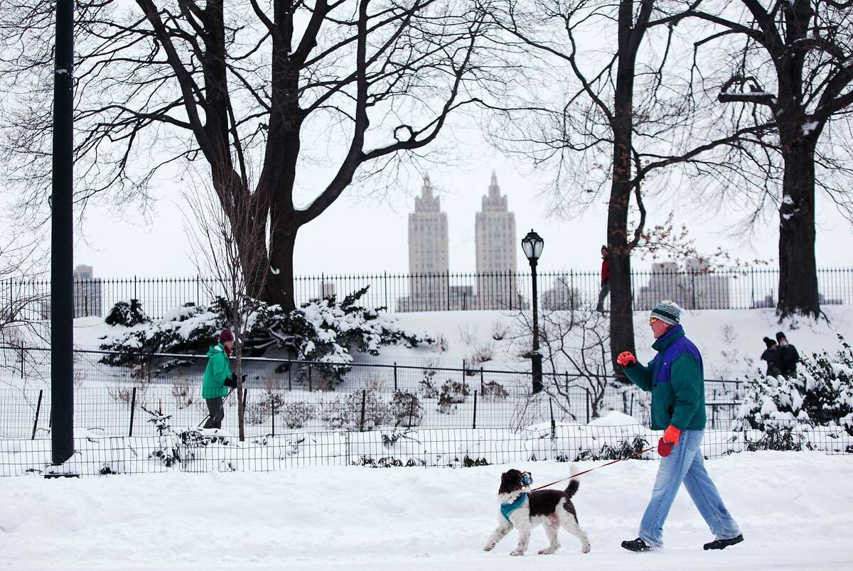 2. New York A passerby walks his dog an accumulation of snow on January 27, 2015 in Central Park in New York.