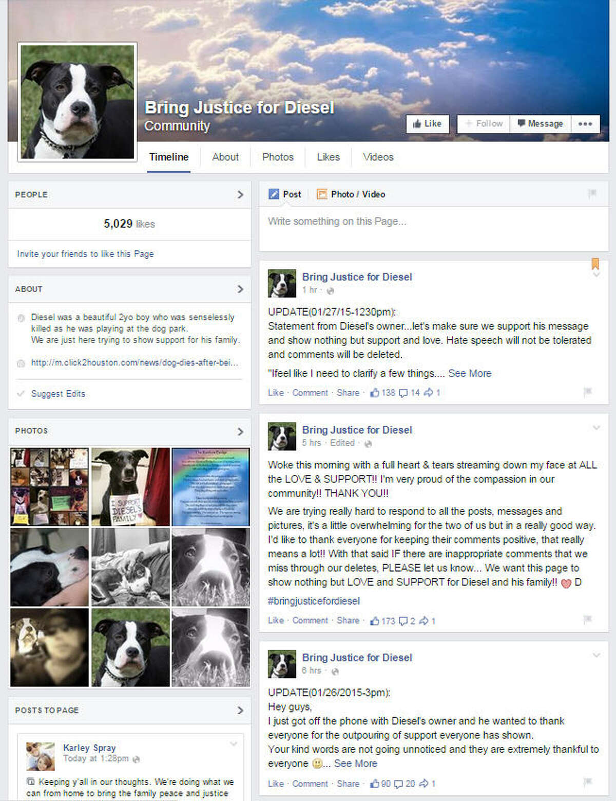 In less then two days, the Facebook page for the fallen dog gathered over 5,000 likes, and dog owners began submitting photos of their pets in a show of support for Diesel.