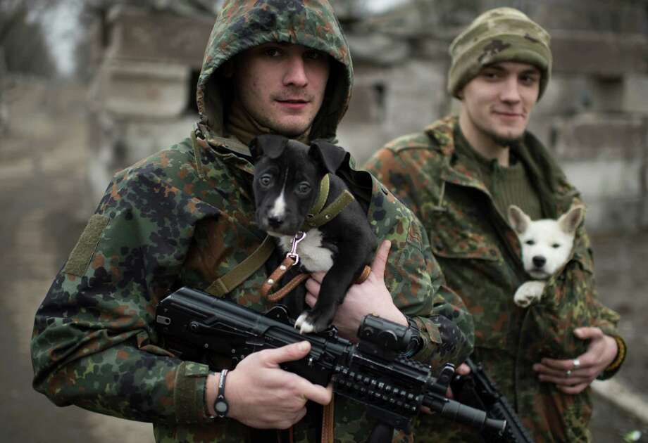 Ukrainian servicemen put their dogs under their jackets to keep them warm in Mariupol, Ukraine, on Wednesday. The military conflict in eastern Ukraine has been raging since April, claiming more than 5,100 lives. Photo: Evgeniy Maloletka, STR / AP