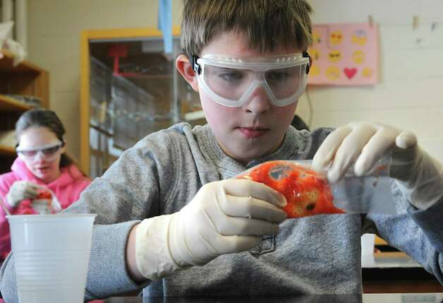 Sixth grader Brandon Selmer squishes the cells of a strawberry in a DNA workshop during STEM day at Maple Hill Middle School on Thursday, Jan. 29, 2015 in Castleton-on-Hudson, N.Y. Students in grades 5-8 learn about careers in Science, Technology, Engineering and Math through a day of engaging workshops led by business representatives, college students and classroom teachers. (Lori Van Buren / Times Union) Photo: Lori Van Buren / 00030360A