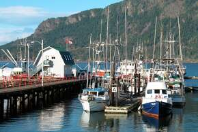 The marina waterfront of Cowichan Bay, where fishing and tourism reign.