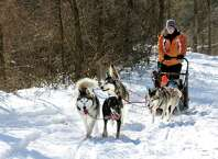 Musher and dog trainer Kate Walrath of Run by Dogs gives dog sled rides during Winterfest on Saturday, Jan. 31, 2015, at Schodack Island State Park in Schodack Landing, N.Y. Events included ice skating, snow shoeing and a scavenger hunt. (Cindy Schultz / Times Union)