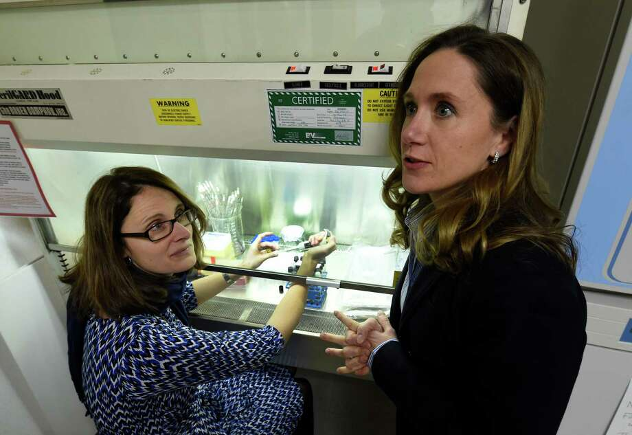 Kathleen Daddario DiCaprio, Ph.D., right, with one of her former professors, Kari Murad, Ph.D., professor of Biology, in a lab at the College of Saint Rose Monday morning Jan. 26, 2015 in Albany, N.Y. (Skip Dickstein/Times Union) Photo: SKIP DICKSTEIN / 00030223A