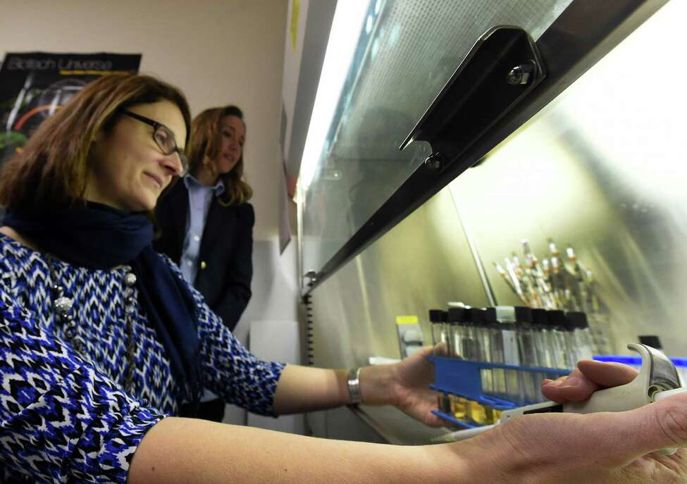 Kari Murad, Ph.D., professor of Biology, foreground, and her former student Kathleen Daddario DiCaprio, Ph.D., in the lab at the College of Saint Rose Monday morning Jan. 26, 2015 in Albany, N.Y. (Skip Dickstein/Times Union)