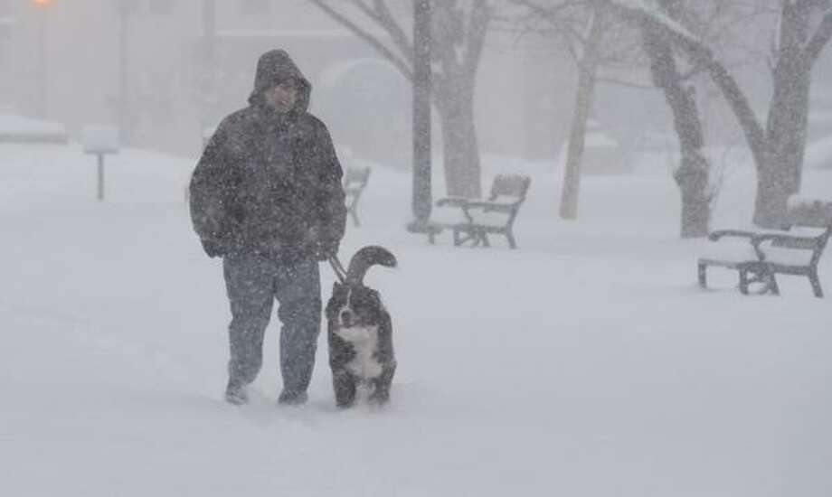 Brian Weijola of Albany walks his dog, Sasha, in Washington Park on Monday, Feb. 2, 2015. Groundhog Punxsutawney Phil predicted six more weeks of winter but, of course. Snow Shovel Nation already knew that. (Skip Dickstein / Times Union)