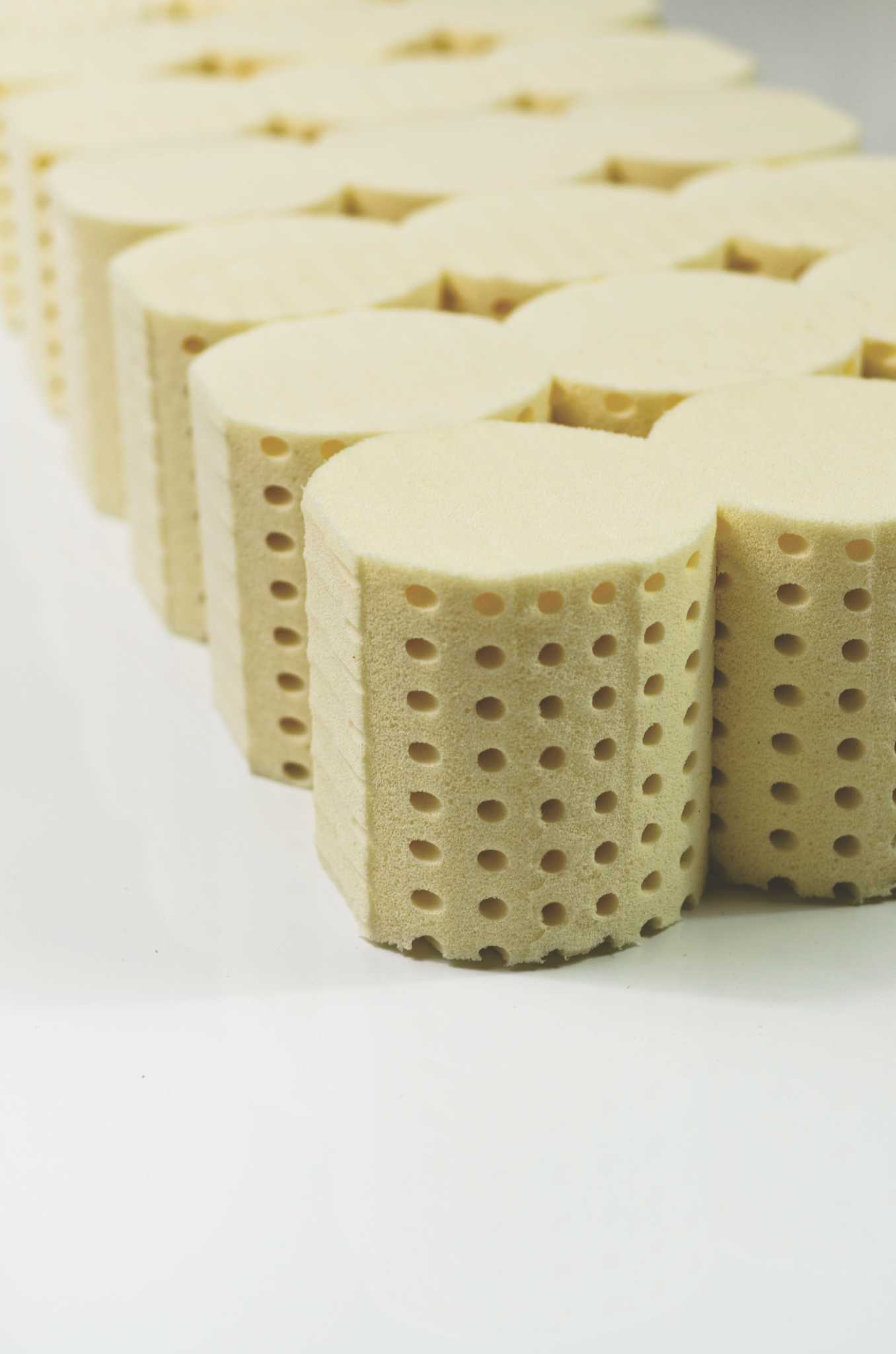 Latex International changes name to Talalay