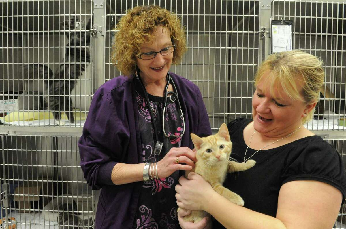 Kelly De Vall, left, with Cheryl Keosky and Jackson at the Saratoga County Animal Shelter on Saturday Jan. 24, 2015 in Ballston Spa , N.Y. (Michael P. Farrell/Times Union)