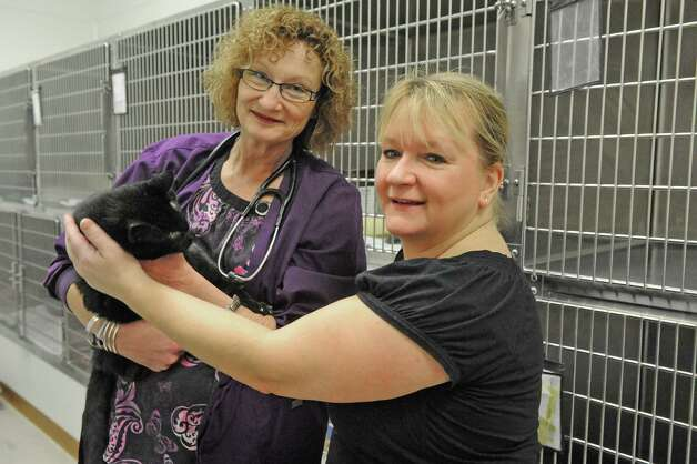 Kelly De Vall, left, with Cheryl Keosky and Ziggy at the Saratoga County Animal Shelter on Saturday Jan. 24, 2015 in Ballston Spa , N.Y. (Michael P. Farrell/Times Union) Photo: Michael P. Farrell / 00030299A