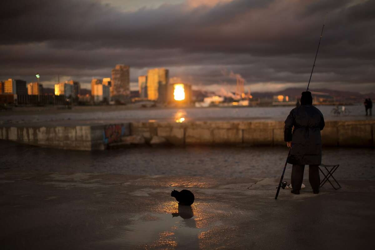 MAYBE YOU SHOULD TRY A DIFFERENT KIND OF BAIT: In Barcelona, a cat waits next to a man fishing a breakwater on the Mediterranean Sea, but not catching much.