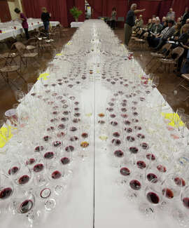 Judges received hundreds of glasses of wine during the one week tasting in Cloverdale.