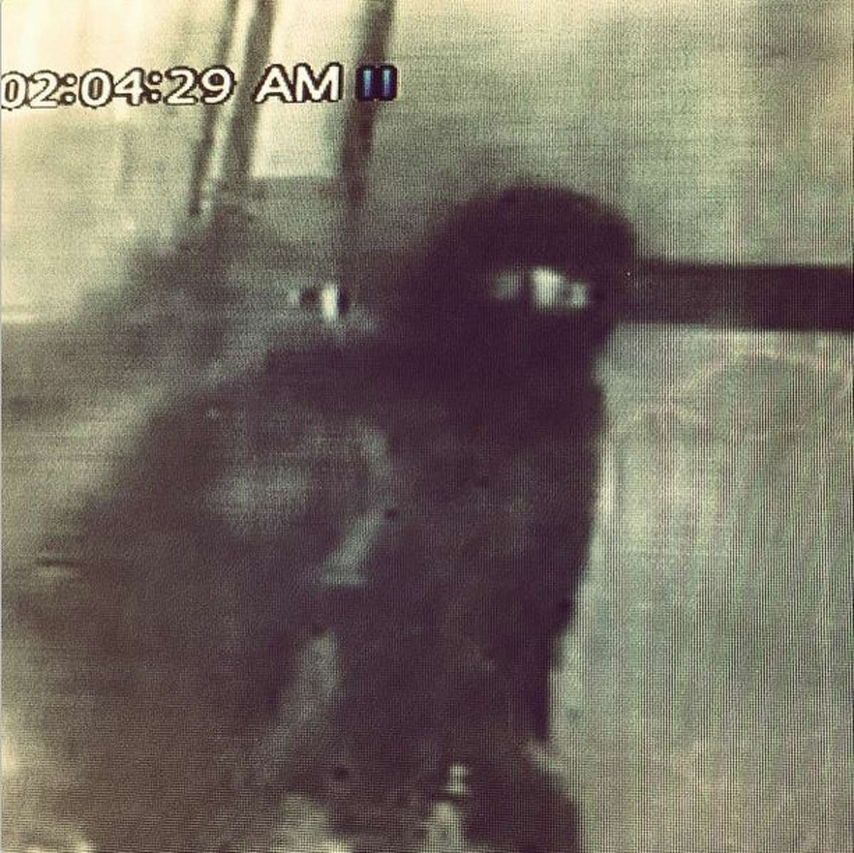 Jason Dady, owner/chef of Two Bros. BBQ Market, posted this photo from a security camera of an alleged burglar who took six cases of brisket, porkloin, sausage chicken among other meats weighing 450 pounds and valued at $2,500 from the restaurant in January 2015.
