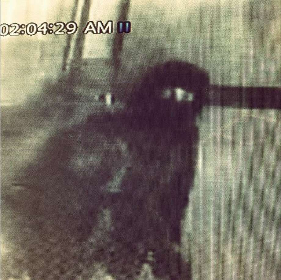 Jason Dady, owner/chef of Two Bros. BBQ Market, posted this photo from a security camera of an alleged burglar who took six cases of brisket, porkloin, sausage chicken among other meats weighing 450 pounds and valued at $2,500 from the restaurant in January 2015. Photo: Jason Dady/Instagram