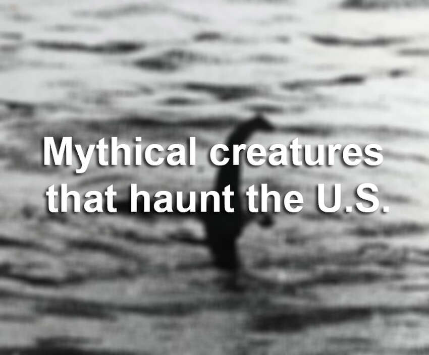 Where there's a will, there's a wishy-washy sighting of some mythological creature in the U.S. Source: Hog Island Press