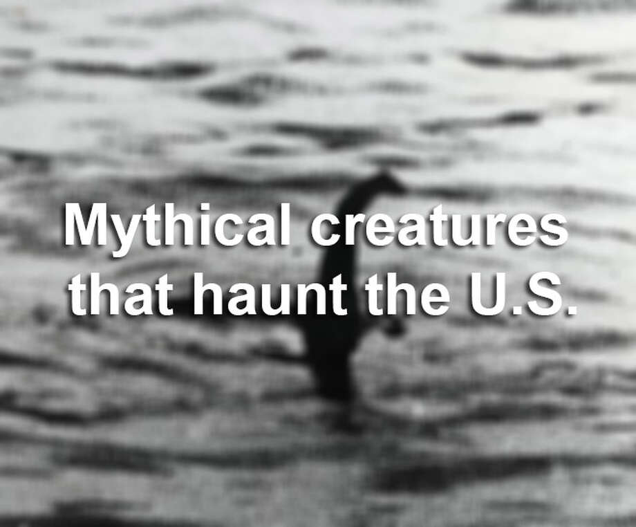 Where there's a will, there's a wishy-washy sighting of some mythological creature in the U.S.   Source: Hog Island Press Photo: Bentley Archive/Popperfoto, Photo Illustration / Popperfoto