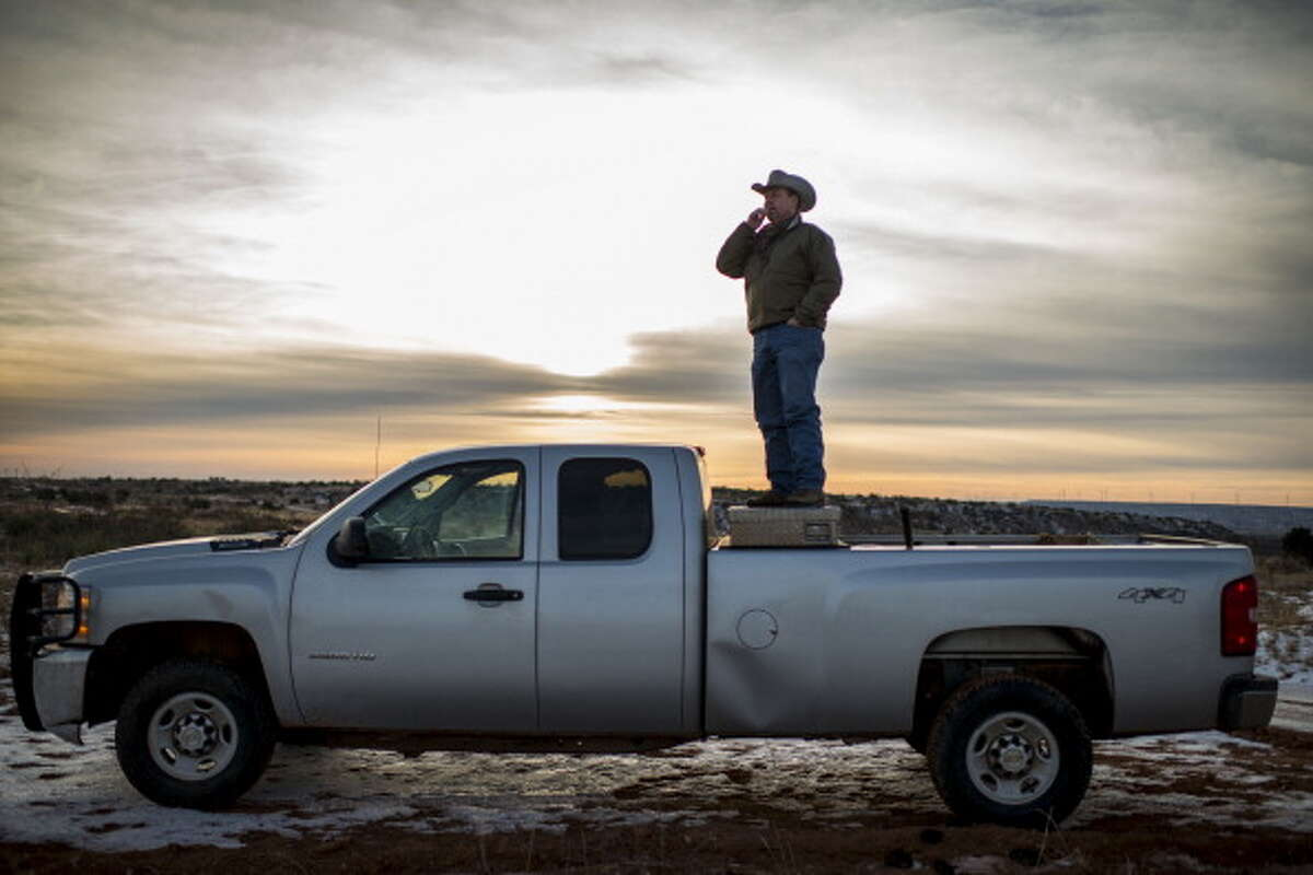 POST, TX - DECEMBER 11: Sixth generation cattle rancher Mark Kirkpatrick feeds his yearly heifers on his ranch, named the Stoker-Kirkpatrick Ranch, in Post, Texas on Wednesday, December 11, 2013. Kirkpatrick is politically conservative --- believing less government is better government.