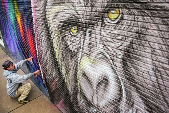"""Sebasten """"Mr. D"""" Boileau works on a mural of a gorilla at 2119 Washington Avenue on Thursday, Feb. 5, 2015, in Houston. The mural is part of a partnership with the Houston Zoo, local business owners and five artists to celebrate HoustonâÄôs newest residents, seven western lowland gorillas, arriving soon. The murals will stay on the walls for at least of six months."""