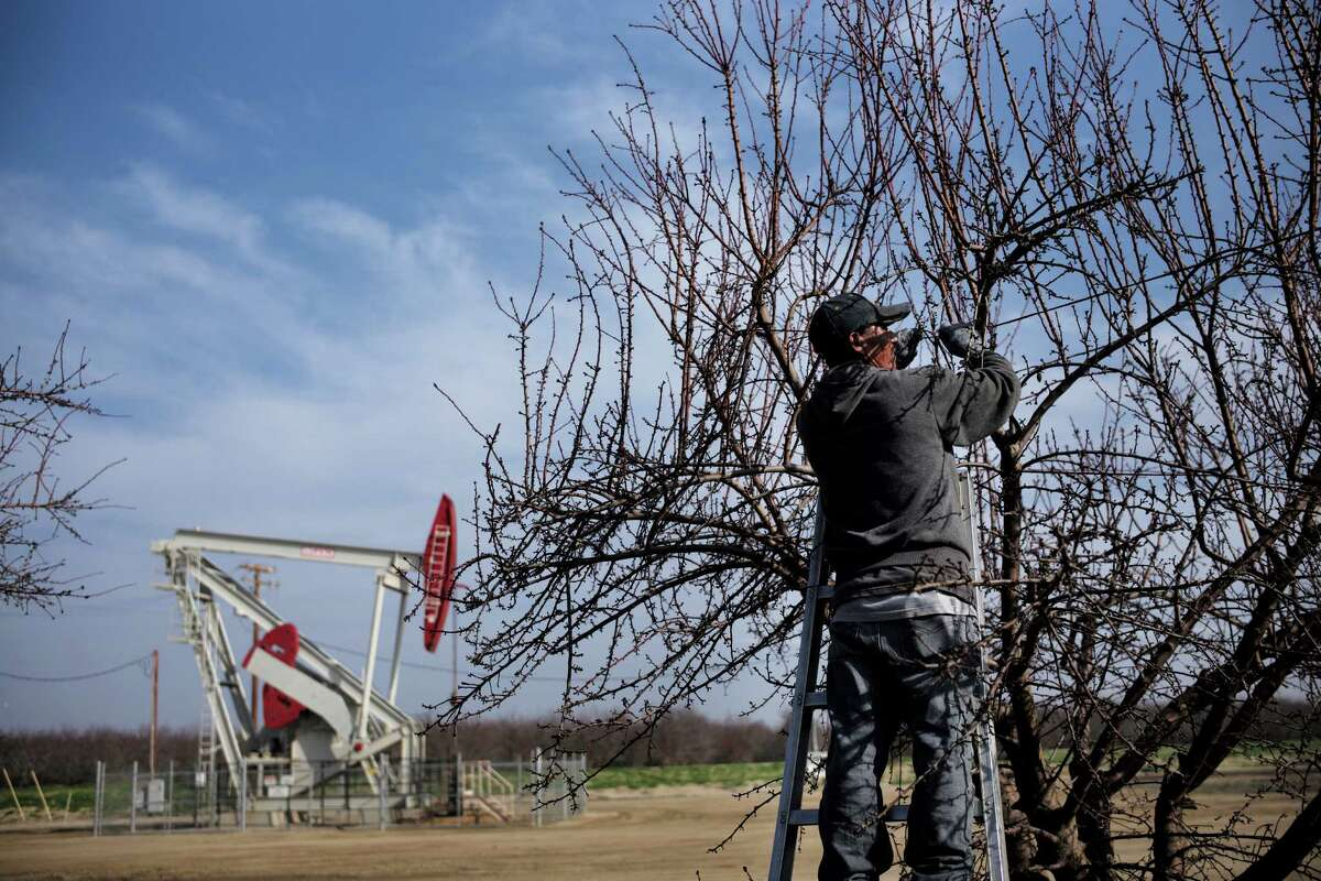 A farmworker ties almond tree branches with strings as a pumpjack operates near the orchard, Friday, Jan. 16, 2015, in Shafter, Calif. California regulators authorized oil companies more than 2,500 times to inject wastewater and other production-related fluids into federally protected aquifers potentially suitable for drinking and watering crops in the nation?'s agricultural center, state records show. (AP Photo/Jae C. Hong) ORG XMIT: CAJH406
