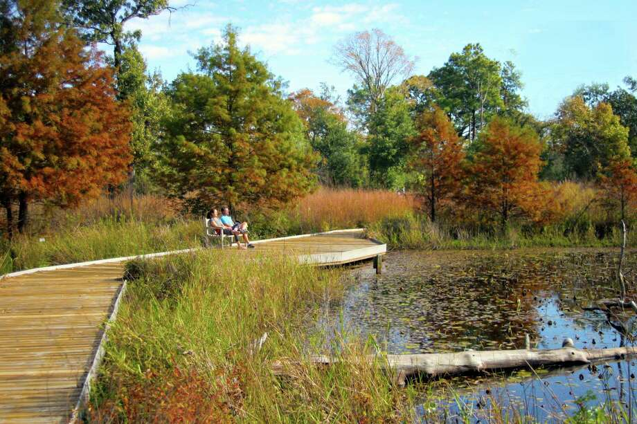 Watch the wildlife at the meadow, pond and observation decks at the Houston Arboretum and Nature Center. Photo: Unknown
