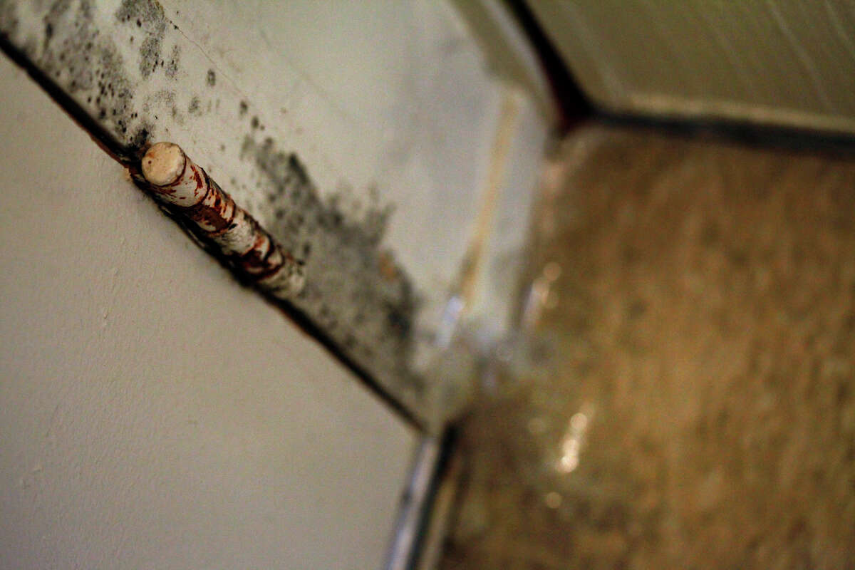 Mole grows along the door and tape in placed to cover a hole where mice come in, is discovered by inspectors, Tuesday February 25, 2014, during a mandatory inspection of the Hacienda Public Housing in Richmond, Calif.