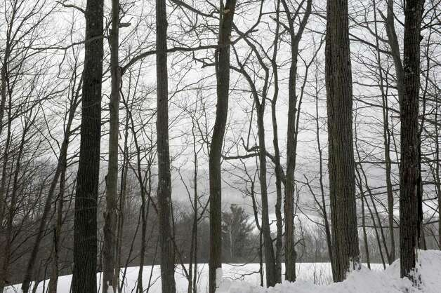 A view from the 350 acres in the Helderbergs that are being preserved as a public resource through Albany County on Friday Feb. 6, 2015 in Berne , N.Y.  (Michael P. Farrell/Times Union) Photo: Michael P. Farrell / 10030497A