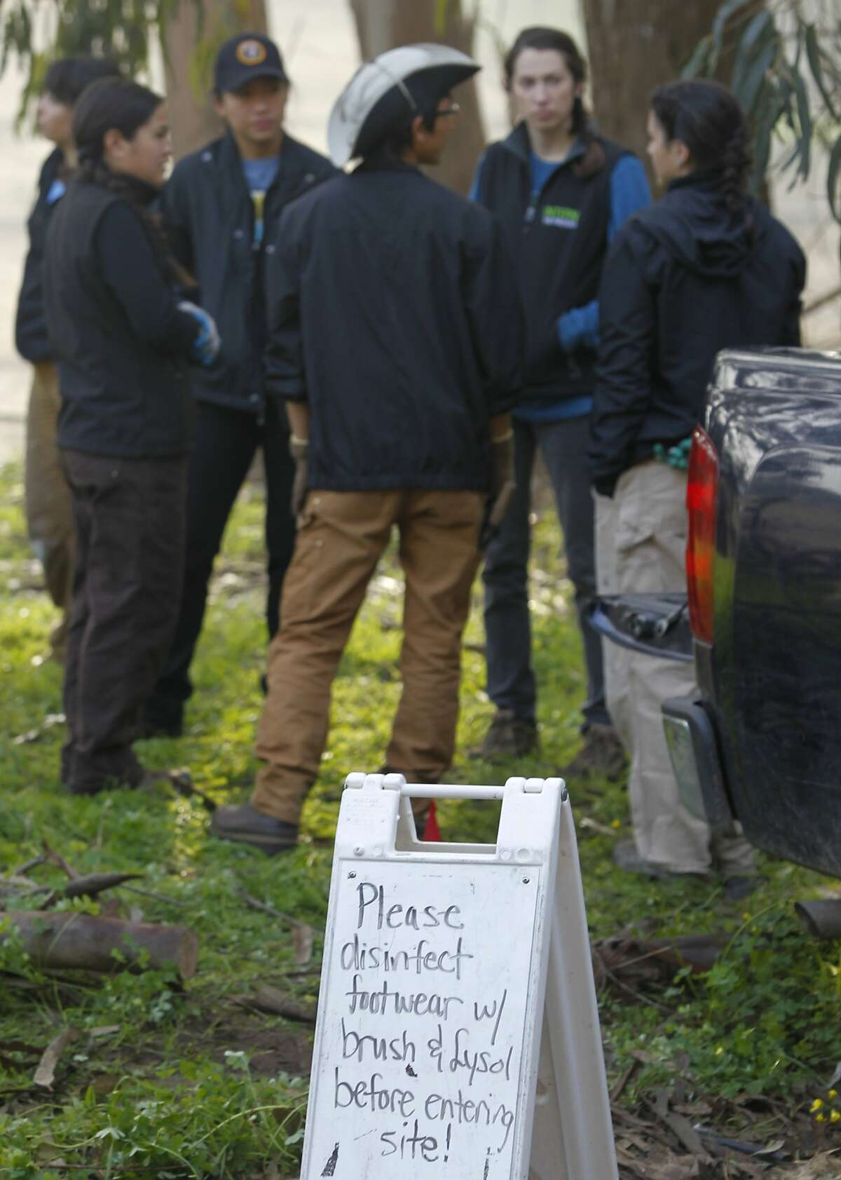Volunteers and interns gather before planting native vegetation for a restoration project at the Presidio in San Francisco, Calif. on Wednesday, Feb. 4, 2015. The Presidio Trust is implementing a new protocol by disinfecting footwear to minimize the spread of the Phytophthora plant fungus.