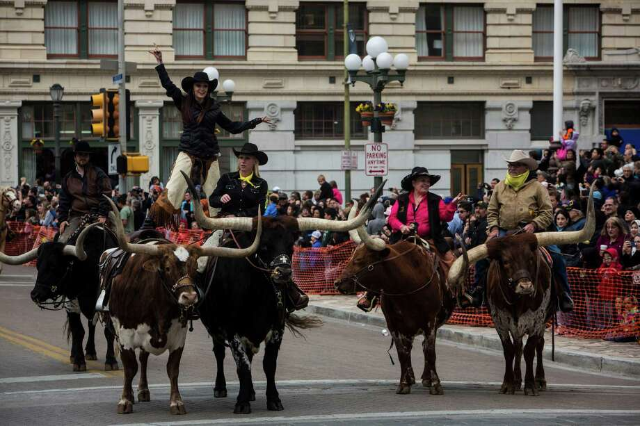 The Texas Wild Bunch performs during the San Antonio Stock Show & Rodeo annual Western Heritage Parade and Cattle Drive in downtown San Antonio, TX on Saturday, February 7, 2015. Photo: Carolyn Van Houten, San Antonio Express-News / 2015 San Antonio Express-News