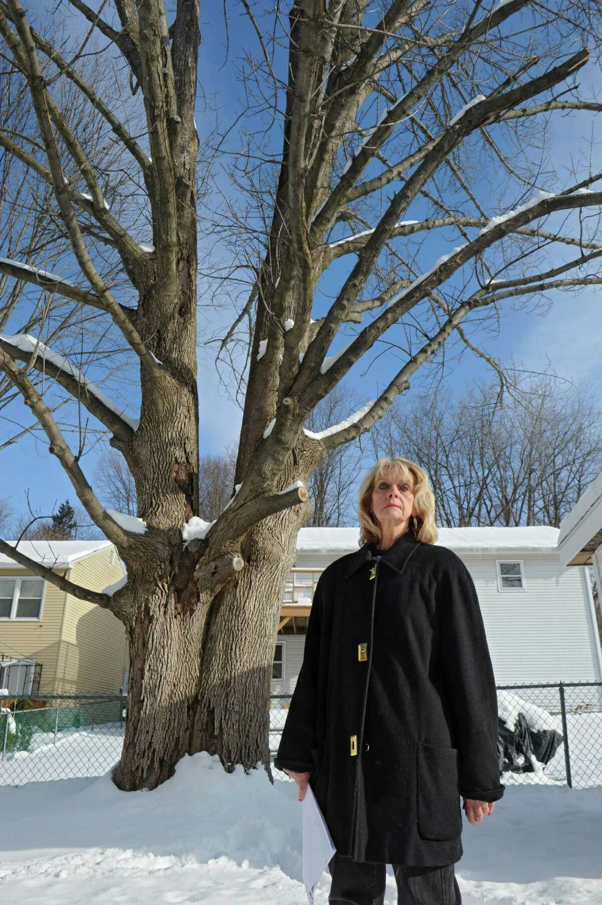 Mary Jo Occhialino stands in front of her backyard tree that she says is perfectly healthy, yet the city wants her to take it down Thursday, Feb. 5, 2015 in Albany, N.Y. (Lori Van Buren / Times Union)