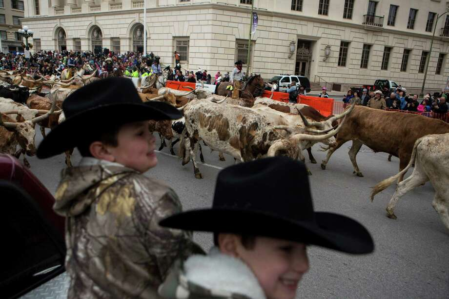 Annual western heritage parade cattle drive houston for Western pool show 2015