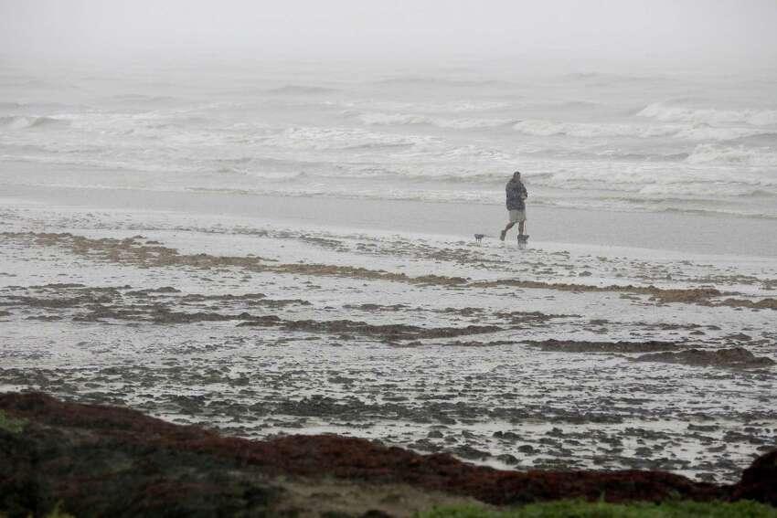 Tourist trap: Galveston Beach Reasons to avoid: mounds of seaweed