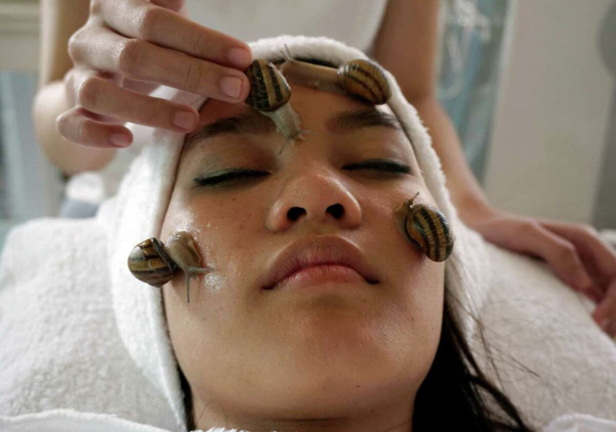A customer receives a beauty treatment with snails at a snail farm in Chiang Mai province, northern of Thailand. That this latest addition to the global beauty and wellness craze - snail facials - should surface in the hills of the area is only natural. This Southeast Asian country ranks among the world's top spa destinations, with massage treatments of every description offered around just about every corner.