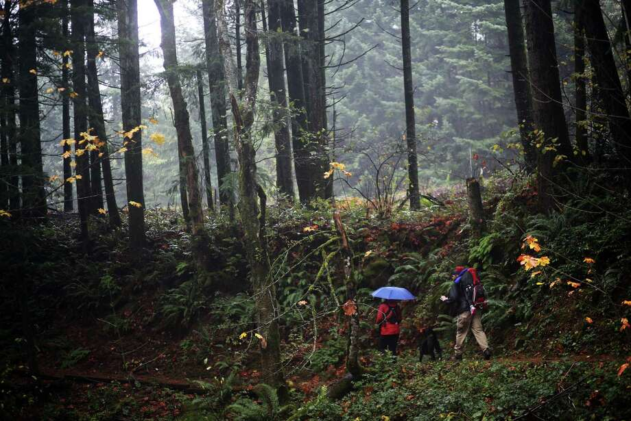 A couple walks the the Pacific Crest Trail in Cascade Locks, Ore. Photo: Thomas Patterson, MBO / Statesman Journal