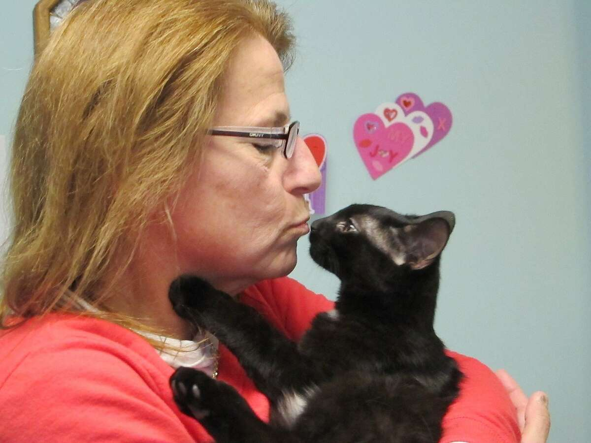 HOPING TO PLACE PEYTON: Debbie Grondin gives Peyton a pre-Valentine's Day smooch at home in Lacey Township N.J. Grondin is taking care of the kitty until he can be adopted, which could be a while. Black cats are the hardest felines to place for adoption.