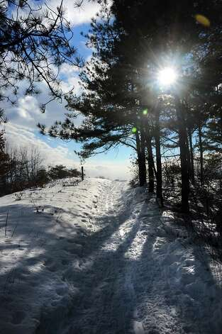 Cross-country ski trails are seen in the woods of the Albany Pine Bush Preserve on Thursday, Feb. 12, 2015 in Albany, N.Y. (Lori Van Buren / Times Union) Photo: Lori Van Buren / 00030599A